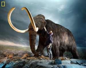 Reviving the Mammoth | Innovation Blueprint